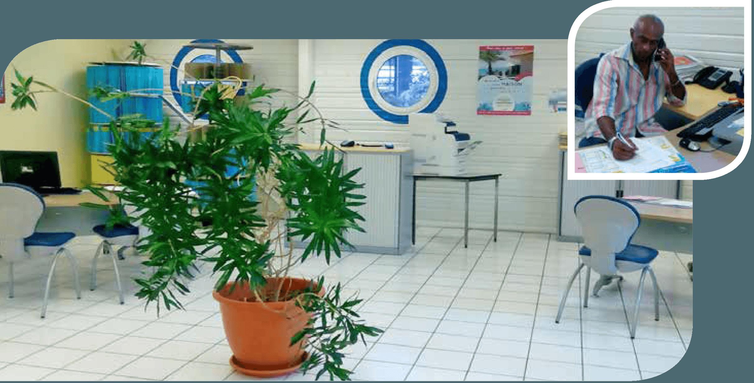 Assurance Outremer Agence du Marin